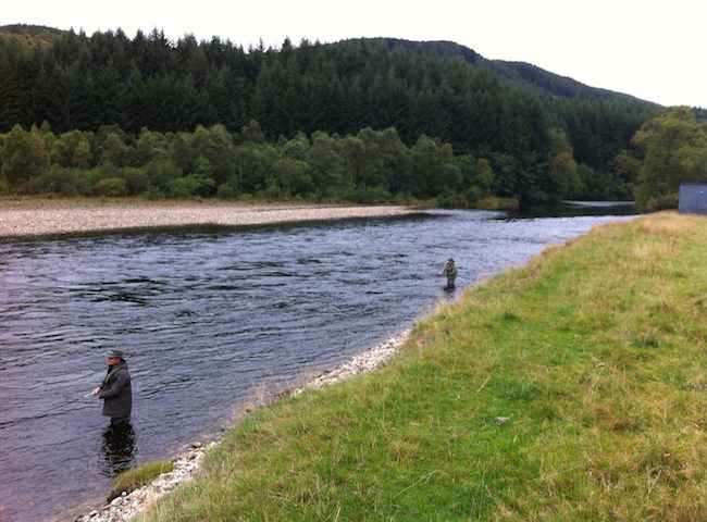 River Tay Salmon Fishing Holidays